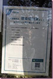 DSC_8327mini