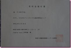 DSC_9971mini