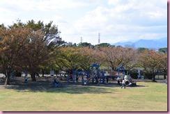 DSC_8649mini